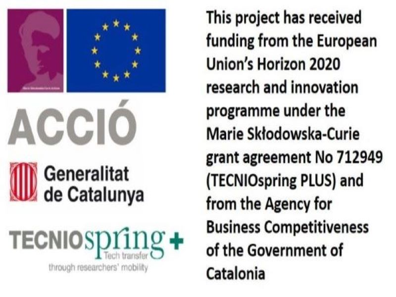 NANOMOL TECHNOLOGIES HAS STARTED THE TECNIOSPRING PLUS PROJECT (TECSPR18-1-0016)